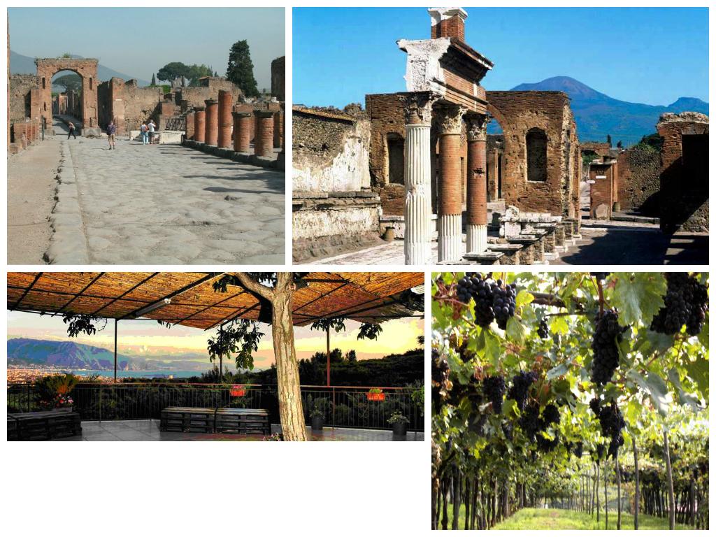 Pompeii & Wine Tasting